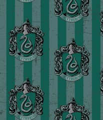 HARRY POTTER * SLYTHERIN Hauswappen School Crest
